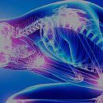 Malattie reumatiche: consigli, terapie e… Covid come fattore scatenante?